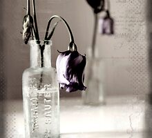 Bottled flowers by NicNilla