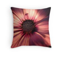 Stunning by Night Throw Pillow