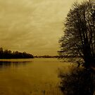 Frensham Ponds by shakey123
