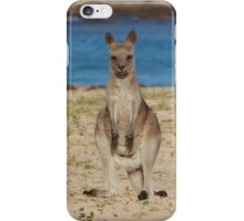 Pebbly Beach Kangaroo - Macropus giganteus iPhone Case/Skin