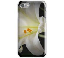 L i l y iPhone Case/Skin