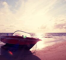 Live in the sunshine, swim the sea, drink the wild air. by the-novice
