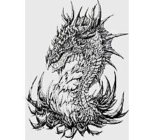 Regal Dragon - ink Photographic Print