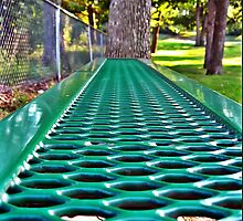 Sitting on a Park Bench... by Tracy DeVore
