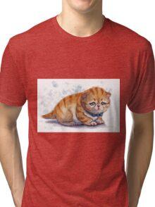 The Saddest Kitten Tri-blend T-Shirt