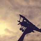 Flight by the-novice