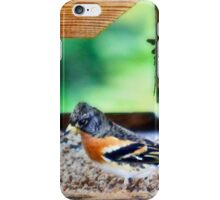 Savouring the peace and quiet iPhone Case/Skin