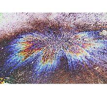 Oil Bird  Photographic Print