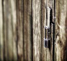 Locked Up by the-novice