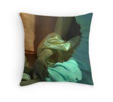 Akimbo Throw Pillow