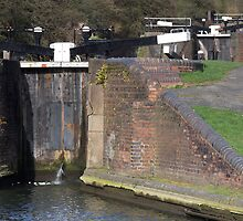 Delph Locks by GCAPARO