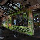 X-Vandels by Jeniella Goci