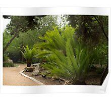 Zilker Prehistoric Garden Plants Poster