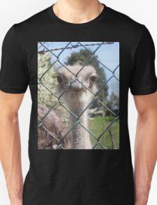 ostrich lad Unisex T-Shirt