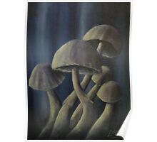 Blue Mushrooms Poster