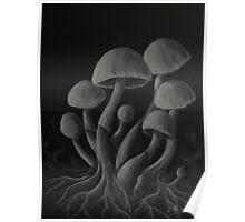 Grey Mushrooms Poster