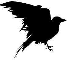 graphic raven Photographic Print