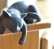 Lazy Cat (100 Step Program) by Catherine C.  Turner