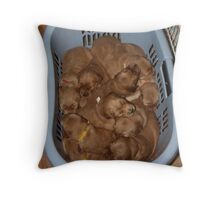 Basket of Golden Nuggets '09 Throw Pillow