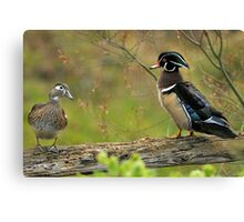 I Do NOT Walk Like a Duck! Canvas Print