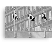Black Flag Canvas Print