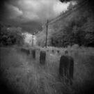 Infared Graves by Nicole Gesmondi