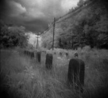 Infared Graves by Nicole Gesmondi