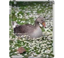single duck among daisies iPad Case/Skin