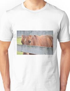 A Horse at the Fence Unisex T-Shirt