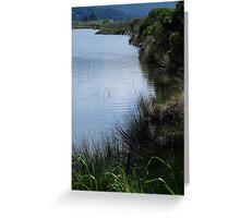 Arcata Marsh & Wildlife Sanctuary Greeting Card