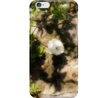 Shadows on the wall............ iPhone Case/Skin