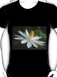 Night Bloomer ~ White Water Lily with Splayed Petals   T-Shirt