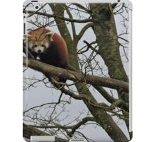 Think I Might Jump Actually iPad Case/Skin
