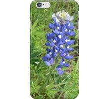 Bluebonnet's Natural Habitat iPhone Case/Skin