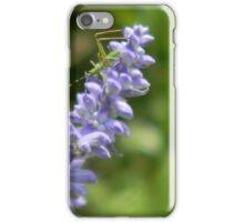 Must Be A Leaf Hopper iPhone Case/Skin
