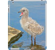 Chick Looking for Mum (Baby Seagull) iPad Case/Skin