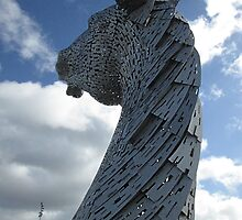 The Kelpies - Baron (1) by MagsWilliamson
