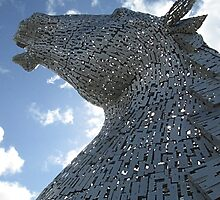 The Kelpies - Baron (2) by MagsWilliamson