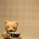 Teddy by Ardisrawr