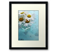 Daisies on a blue background Framed Print