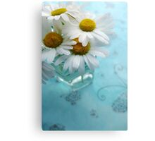 Daisies on a blue background Canvas Print