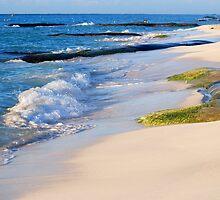 A Bit of Beach by Robin Webster