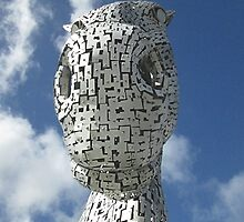The Kelpies - Duke (2) by MagsWilliamson