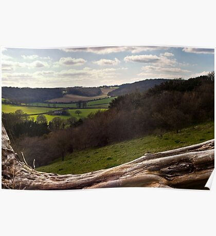 Spring Countryside, Buckinghamshire Poster