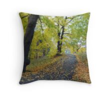 EUROPE - SWEDE 2008 Throw Pillow
