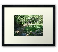 Discgolfing beauty Framed Print
