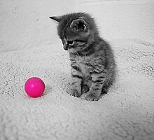 My Pink Ball by Ladymoose