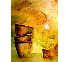 Still Life with Old Dandelion Stencil and Terracotta Pots Photographic Print