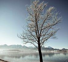 At the lake 02 by Andreas Hummel