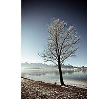 At the lake 02 Photographic Print
